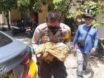 Terbungkus Kantong Plastik Hitam, Bayi Perempuan Mungil Ditemukan di Rumah Kebun Bulukumba