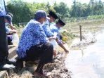 Tingkatkan Pertumbuhan Ekonomi Sektor Pertanian dan Perikanan, Asbatik Kini Hadir di Soppeng